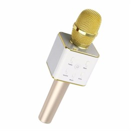 PETRIX SMART KARAOKE MICROPHONE RS533